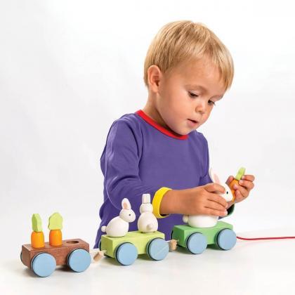 Le Toy Van® Vlak zajček in korenček