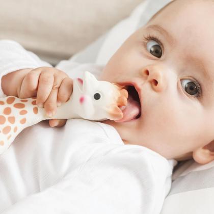 Vulli® Darilni paket Žirafa Sophie z grizalom So&Pure